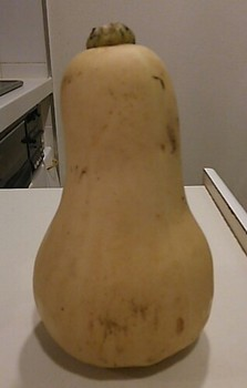 ButternutPumpkin1.jpg